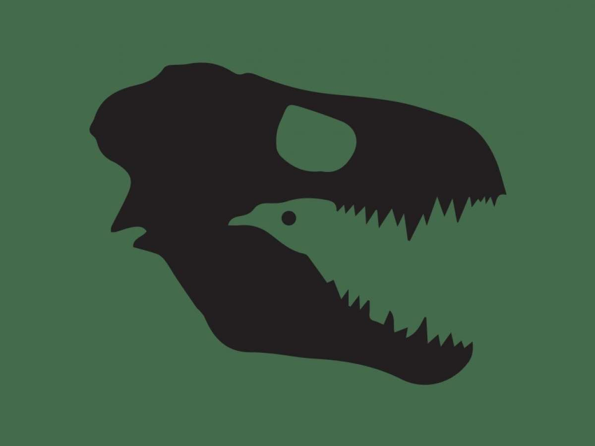 A picture of a dinosaur whose negative space resembles a bird.